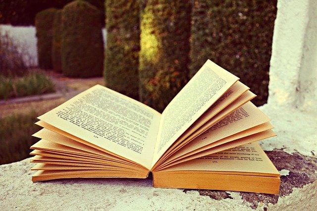 otevřená kniha na zdi