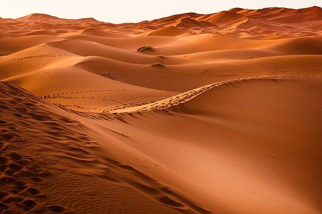 stopy v poušti