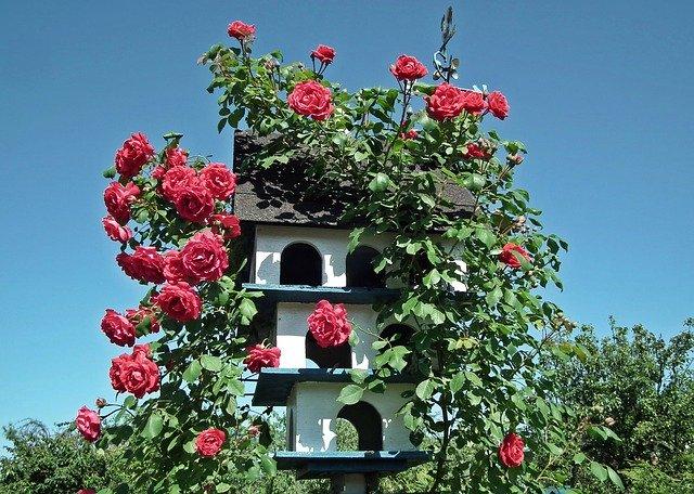 zahradní dekorace s růžemi